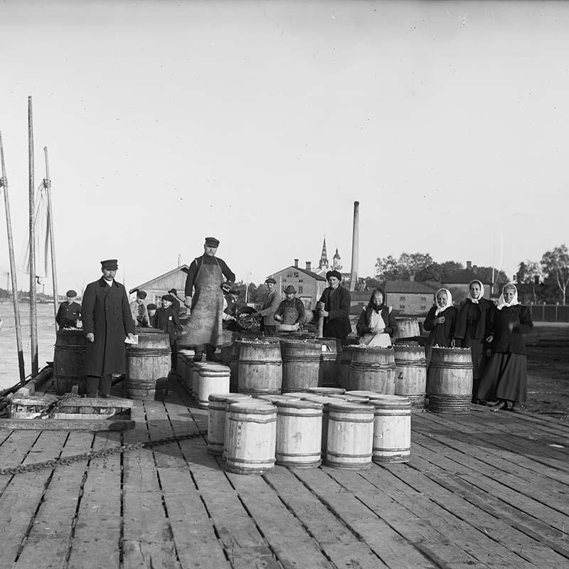 Kalanmyyntiä Karjarannassa 1900-luvun alussa (523004)